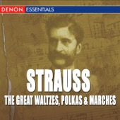 Orchestra of the Viennese Volksoper - Great Strauss Waltzes, Polkas & Marches  artwork