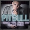 I Know You Want Me (Calle Ocho) - EP