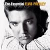Heartbreak Hotel - Elvis Presley