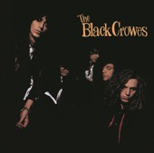 The Black Crowes - Shake Your Money Maker  artwork