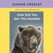 Sloane Crosley - How Did You Get This Number (Unabridged)  artwork