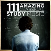 Various Artists - 111 Amazing Classical: Study Music  artwork