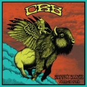 Chris Robinson Brotherhood - Betty's Blends, Volume Two  artwork