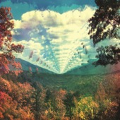 Tame Impala - InnerSpeaker (Collector's Edition)  artwork