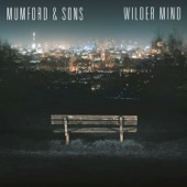 Mumford & Sons - Snake Eyes  artwork