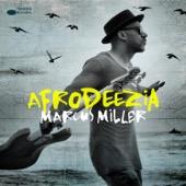 Marcus Miller - Afrodeezia  artwork
