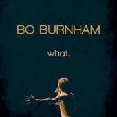 Cover to Bo Burnham's what.