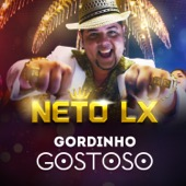 Neto LX - Gordinho Gostoso  arte