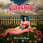Katy Perry - Hot N Cold artwork