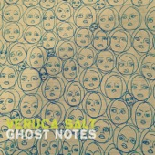 Veruca Salt - Ghost Notes  artwork