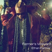 Ethan Farmer - Farmer's Vineyard  artwork