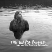 The White Buffalo - Love and the Death of Damnation  artwork