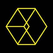 EXO - LOVE ME RIGHT - The 2nd Album Repackage (Chinese Version)  artwork