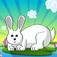 Rabbit Buster