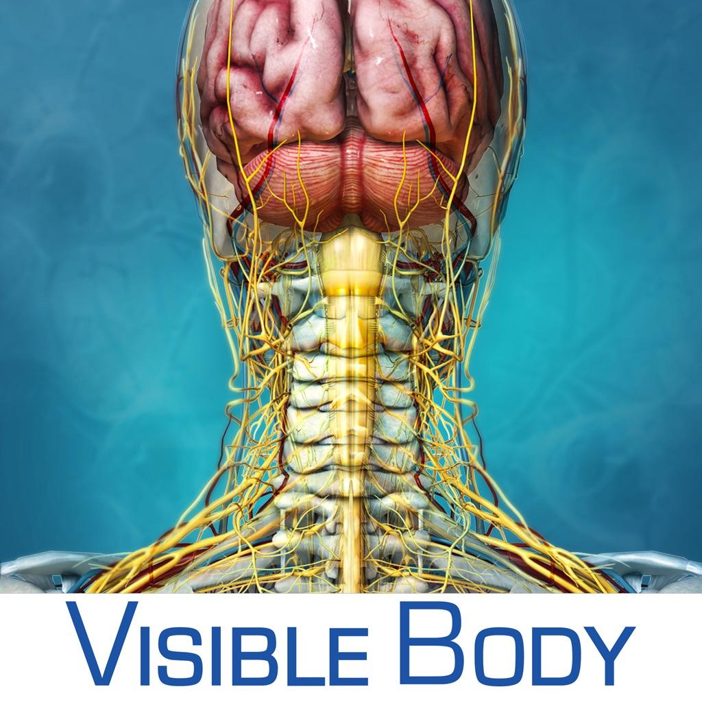 Visible Body Developer Profile