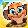 Meerkatz Challenge iOS