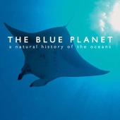 The Blue Planet - The Blue Planet Cover Art