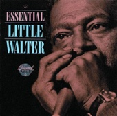Little Walter - The Essential Little Walter  artwork