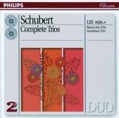 Piano Trio No. 2 In e Flat, Op. 100 D. 929: II. Andante Con Moto