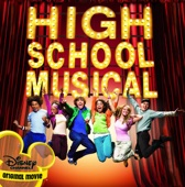 High School Musical - Various Artists Cover Art