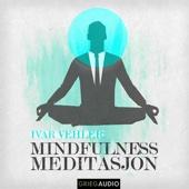 Mindfulness: Meditasjon [Meditation] (Unabridged) - Ivar Vehler