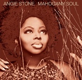 Angie Stone - Wish I Didn't Miss You artwork