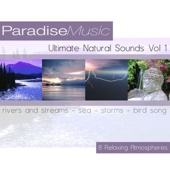 Ultimate Natural Sounds, Vol. 1