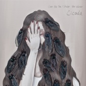 Download Over the Sea / Under the Water - Cicada on iTunes (Indie Rock)
