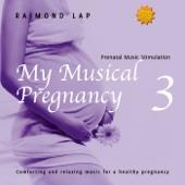 My Musical Pregnancy 3