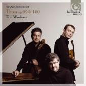 Piano Trio No. 2, Op. 100, D. 929: II. Andante con Moto