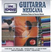 Serie Homenaje: Guitarra Mexicana - Auténticos Éxitos de Nuestra Música