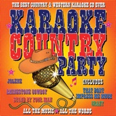 Karaoke Country Party - (Professional Backing Track Version)