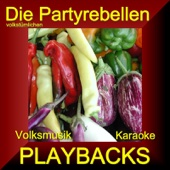 Volksmusik Karaoke Playbacks
