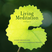 Living Meditation, Vol. 2: Guided Meditations With David Harshada Wagner