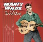 Marty Wilde - Abergavenny artwork