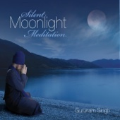Silent Moonlight Meditation