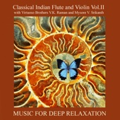 Classical Indian Flute and Violin Vol. II With Virtuoso Brothers V.K. Raman and Mysore V. Srikanth