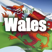 The Best of Wales Karaoke