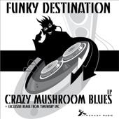 Funky Destination - Crazy Mushroom Blues (Gotta Move Mix) artwork