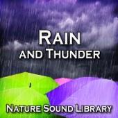 Rain and Thunder (Nature Sounds for Deep Sleep, Relaxation, Meditation, Spa, Sound Therapy, Studying, Healing Massage, Yoga and Chakra Balancing) - Single