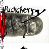Buckcherry - Crazy Bitch  artwork
