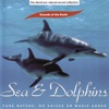 The David Sun Natural Sound Collection: Sounds of the Earth - Sea & Dolphins, Sounds of the Earth