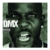 The Best of DMX - DMX Cover Art