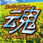 Zankoku Na Tenshi No Theme (Live) (Neon Genesis Evangelion)