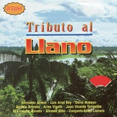 Tributo Al Llano