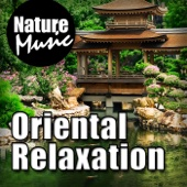 Ancient Herbs and Wisdom for Natural Healing - Nature Music