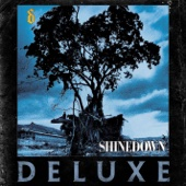 Download Shinedown - Simple Man (Rock Version)