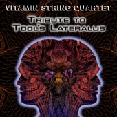 Vitamin String Quartet - Vitamin String Quartet Tribute to Tool's Lateralus artwork