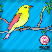Beautiful Bird Songs (Sound Effects)
