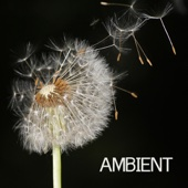 Ambient - Ambient Music and Ambient Sounds for Relaxation Meditation, Spa, Massage and Yoga